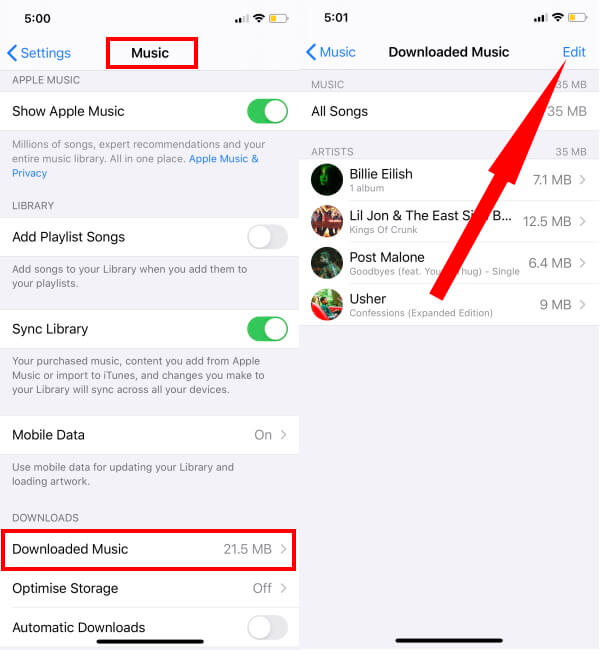 Remove Offline Songs from Apple Music