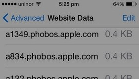 how to remove website data from safari in iPhone 6, iPhone 6 Plus, iPhone 5S/5 and earlier iPhones and iPad