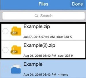 How to zip and Unzip file on iOS 8: Password Protected