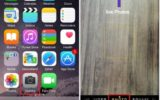 how to shoot or capture a live photos on iPhone 6s, 6S Plus in iOS 9 use