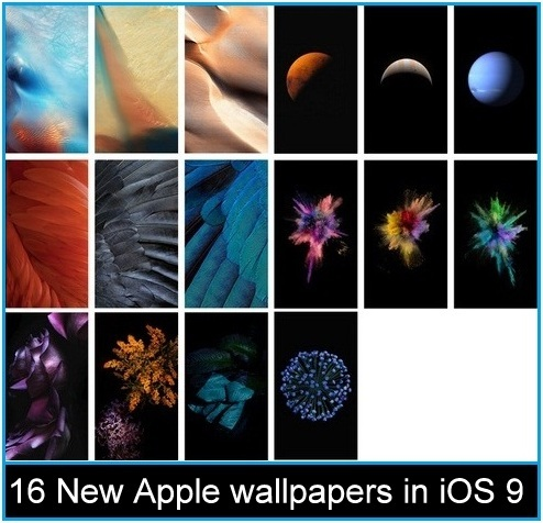 How to change background image in ios 9 ios 10 ios 11 for Change background wallpaper your home screen