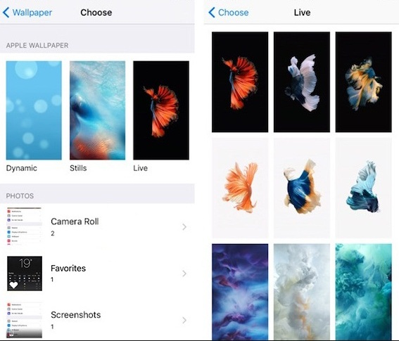 How To Change Background Image Iphone Xs Max Xs Xr X 8 7 6s