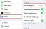 How to Change default Search engine in Safari on iPhone 6S and iPhone 6S Plus