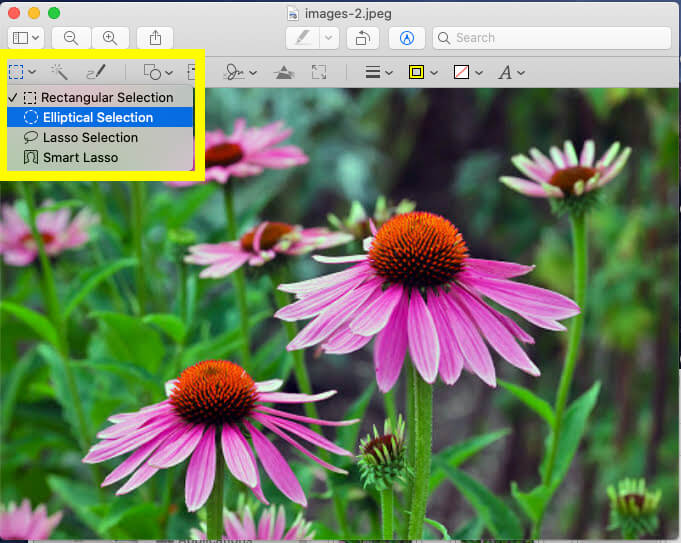 Select Shape on Mac Preview to Crop image