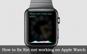 Siri not working on Apple Watch: Easy solution