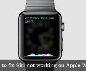 how to fix Siri not working on Apple Watch: Easy solution