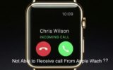Apple watch can't answer call