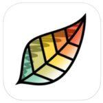 iPad pro drawing app for iOS 9