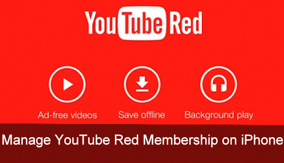 cancel YouTube Red Membership on iPhone, iPad how to