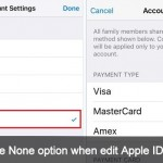 How to fix i can't see None option when edit Apple ID payment info
