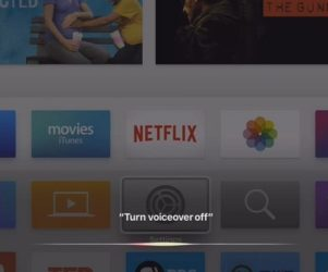 Turn off VoiceOver using Siri by Apple TV Siri Remote