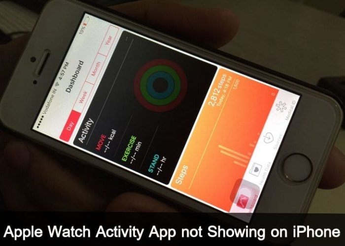 Apple Watch Activity app on iPhone 6S Plus