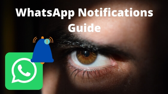 Enable or Disable WhatsApp Notification for Chat and Group on iPhone