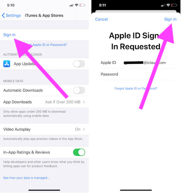 Sign in your iPhone app store with Apple and Password