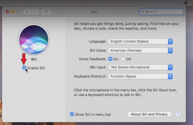 How to enable-disable Siri on Macbook air, macos sierra
