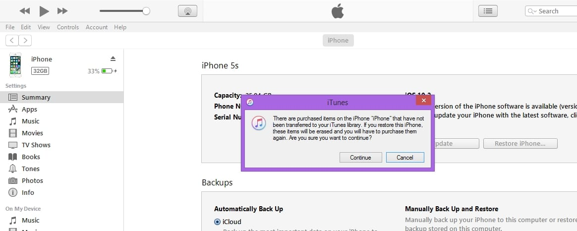 Click on continue for start restore iPhone