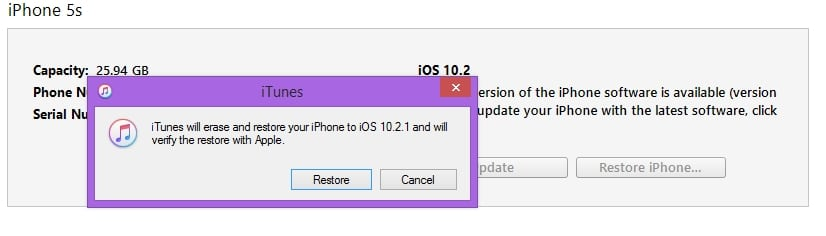 Start Restore process for install new iOS on iPhone iPad
