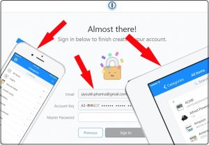 Sign In or Access 1Password web account on iPhone, iPad App