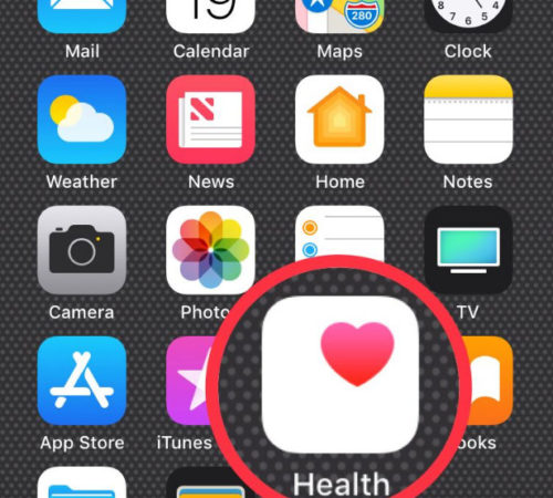 Open the health App on iPhone home screen