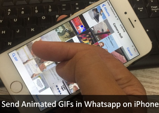 search and send Animated GIFs in Whatsapp on iPhone