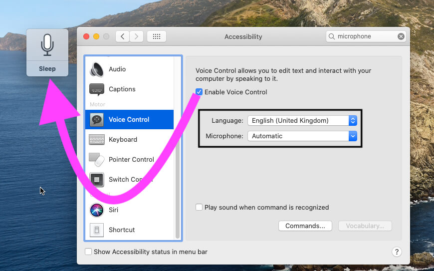 Enable Voice Control on Mac System Preferences under Accessibility