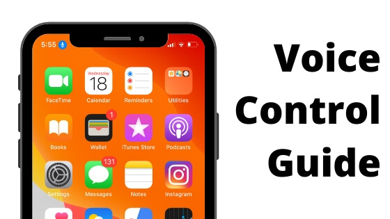Turn off and Turn on Voice Control guide on iPhone and iPad