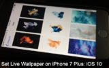 Easy set up Live Wallpaper on iPhone 7 Plus on iOS 10