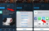 Get Twitter video URL from Twitter iOS app
