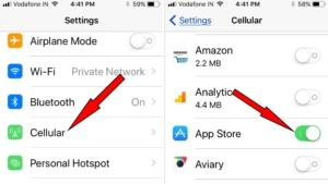tap Cellular to turn on data for App Store iOS 11 or later iPhone and ipad