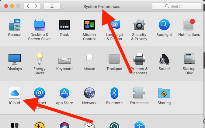 10 iCloud in System Preferences on Mac