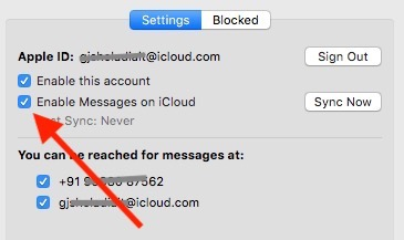 3 Enable Messages on iCloud for auto Sync from settings