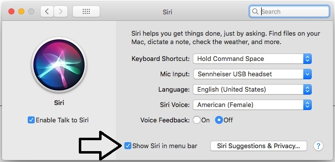 4 Show Siri in Menu Bar on MacOS Sierra
