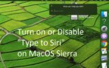 6 Enable Type to Siri on MacOS Sierra