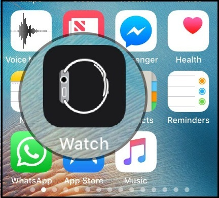 Tap on Watch App on iPhone