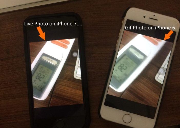1 Send live Photos as Gifs on iPhone Withouth Third-Party App