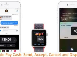1 Apple pay Cash History and Accept or Cancel