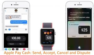 How to Cancel Apple Pay Cash Payment, History, Accept Apple Pay Cash