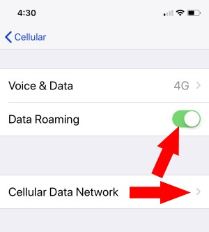 2 Turn on Data Roaming on iPhone X