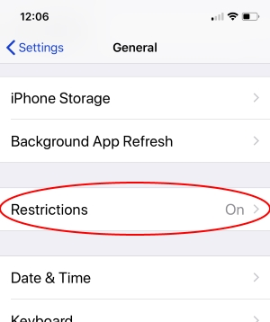 2 Restrictions option in iPhone Settings