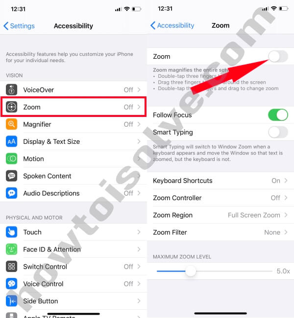 Disable Enable Zoom Out on iPhone