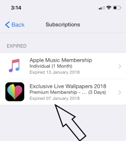1 Manage Subscription on iPhone