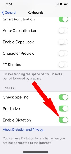 2 Enable Dictation on iPhone settings for Keyboard