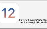 Fix iOS 12 downgrade stuck on Recovery DFU Mode