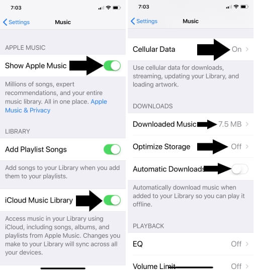 1 Apple Music settings for Use Data and Offline play