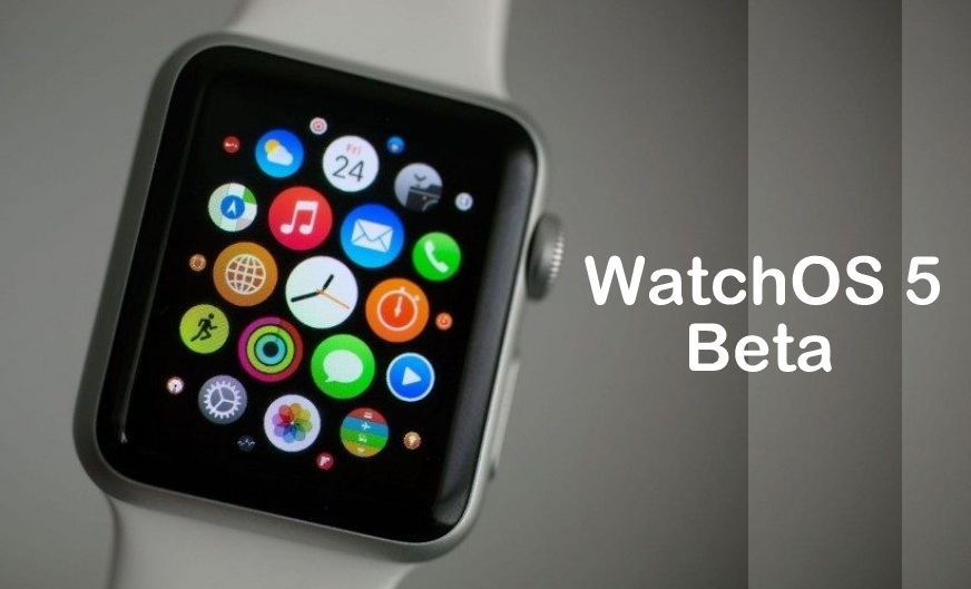 How to Downlaod and install WatchOS 5 Beta on Apple Watch