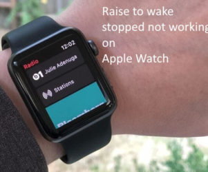 Raise to wake stopped not working on Apple Watch after Update (1)