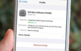 Remove iOS 12 beta profile to Install official iOS 12 Version