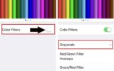 Turn on Color Filters tick on Grayscale on iPhone iOS 12