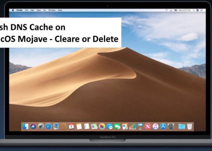 1 Fush DNS on Mac with MacOS Mojave (1)