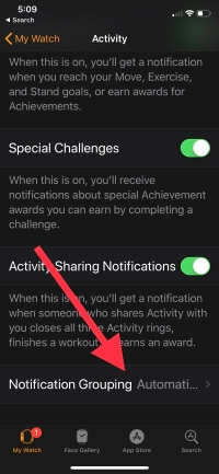 2 Notification Grouping on Apple Watch app on iPhone